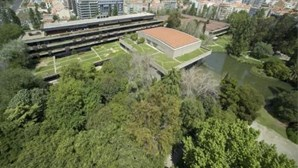 In Gulbenkian you will find a shelter of art and nature